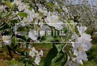 果樹園日誌